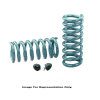 Hotchkis 64-66 GM A-Body Rear 1in Drop Lowering Coil Springs