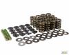 MTN Cams & Valve Spring Kits