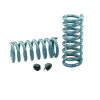 Hotchkis 64-66 GM A-Body Small Block Performance Front/Rear Coil Springs Set