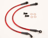 AP 09+ Hyundai Genesis Coupe Rear Steel Braided Brake Line (Red Lines / Black Fittings)
